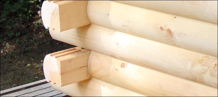 Log Home Damage Repair  Logan County, Kentucky